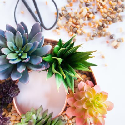 Copper Tube Pan Succulent Planter