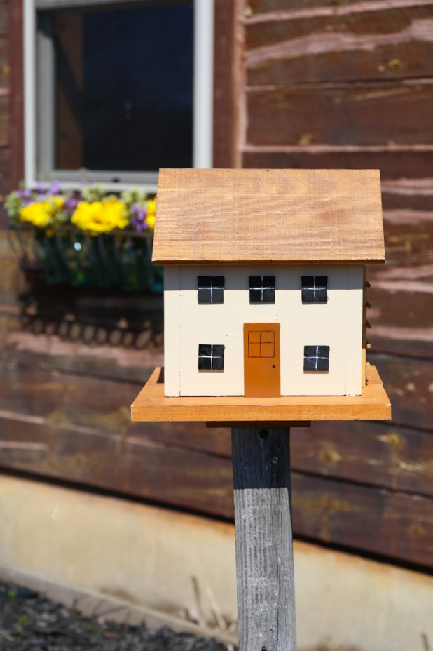 Birdhouse for Wrens