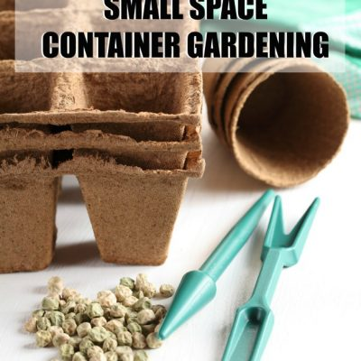 Small Space Container Gardening Ideas