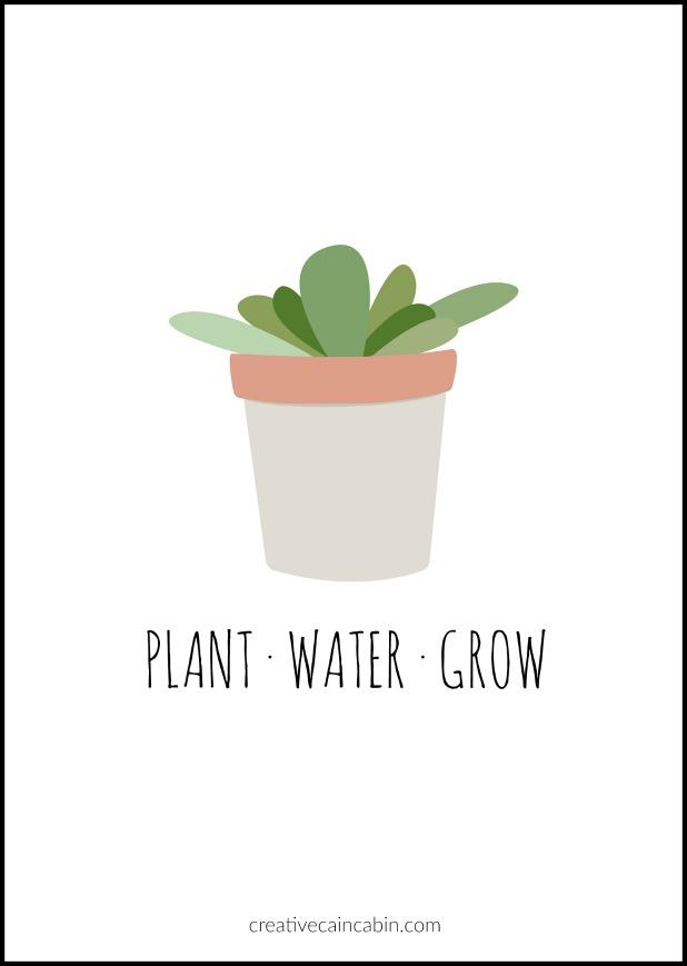 Plant, Water, Grow Free Printable