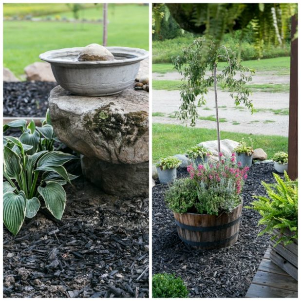 Putting The Potted Perennials Into The Soil Before Winter