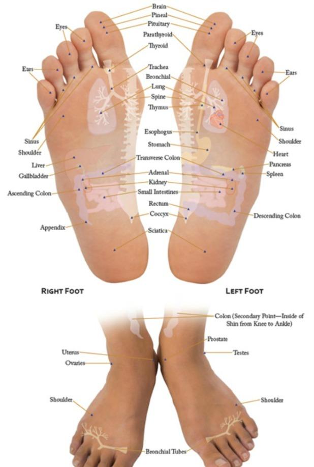 Vita Flex Feet Chart
