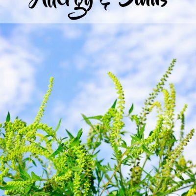Allergy & Sinus Essential Oil Capsule Recipe