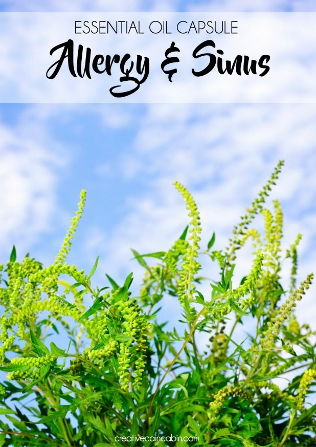 Essential Oil Recipe For Allergy and Sinus Relief