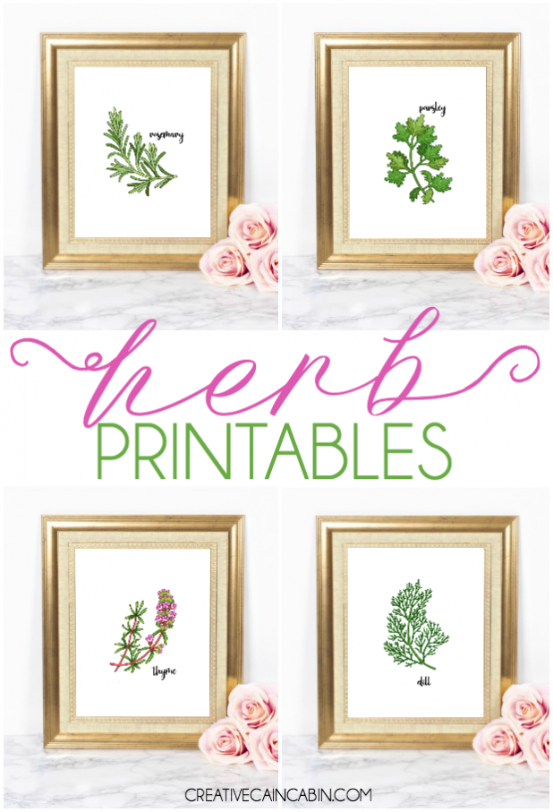 Herb Printables, Botanical Printables, Parsley, Dill, Rosemary, Thyme, Free Herb Artwork