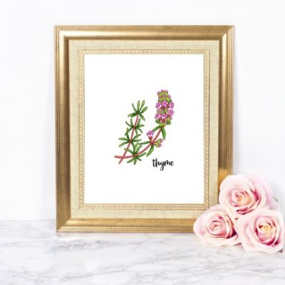 FREE Botanical Herb Printables