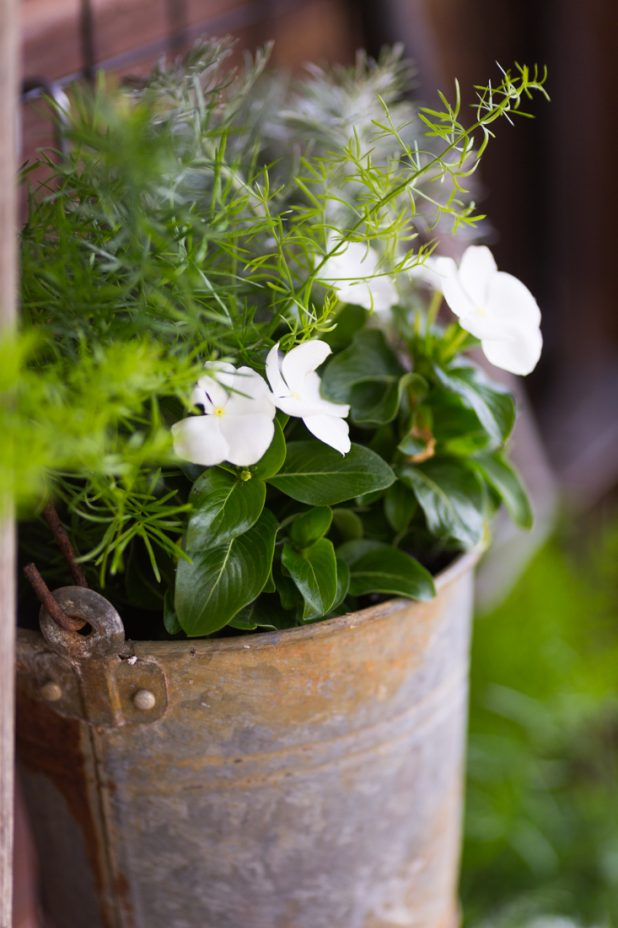 Galvanized bucket filled with annuals attached to old crib springs hanging outside the door of a log home