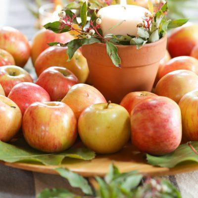 Rustic Farmhouse Fall Apple Decor