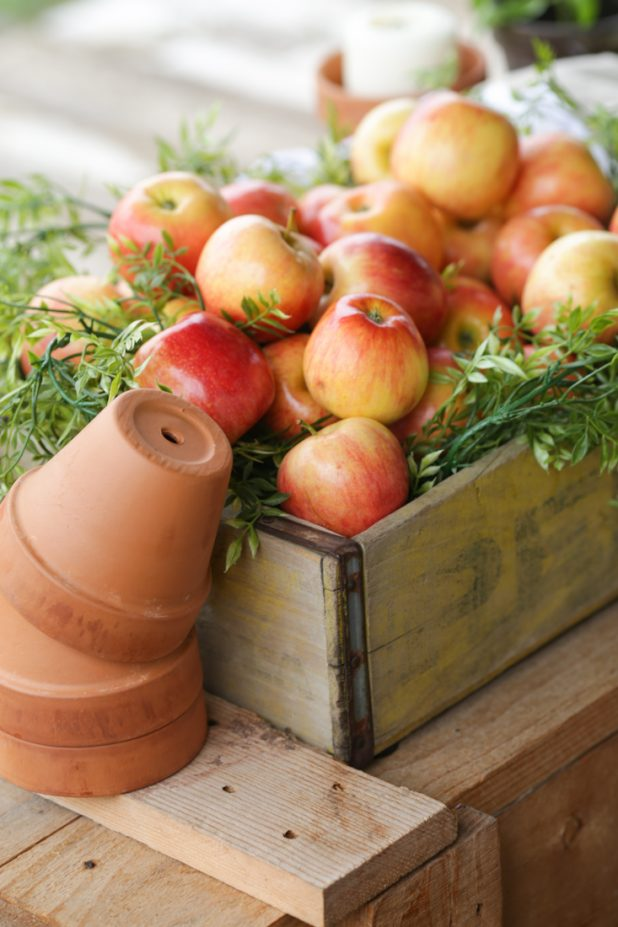 Rustic Fall Decor Using Apples