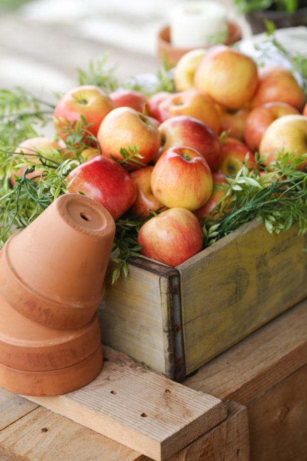 Rustic Fall Decor Using Apples