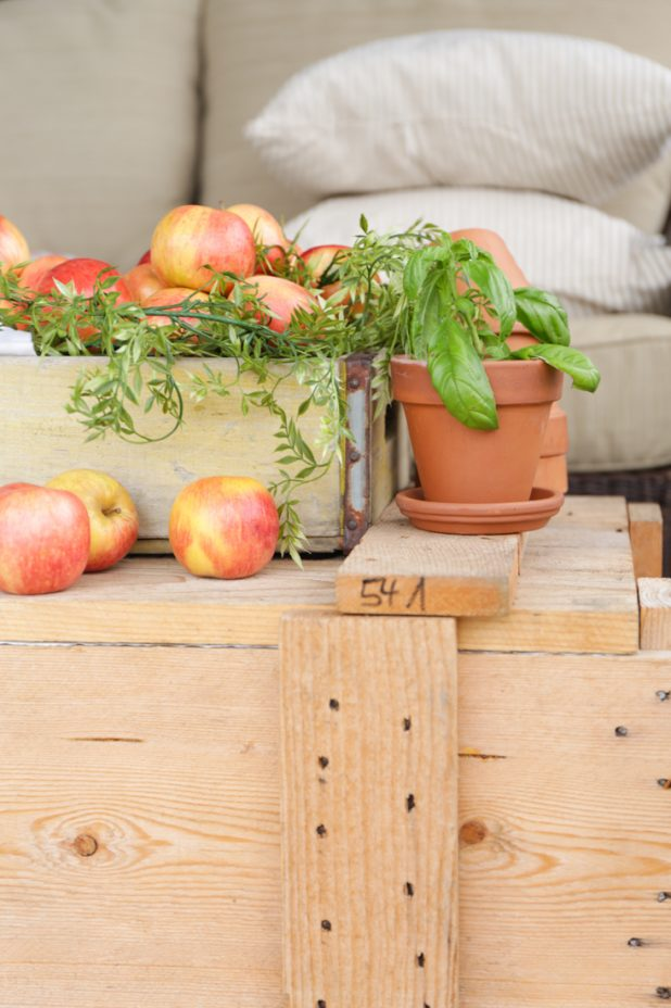 Early fall decorating with a rustic farmhouse theme