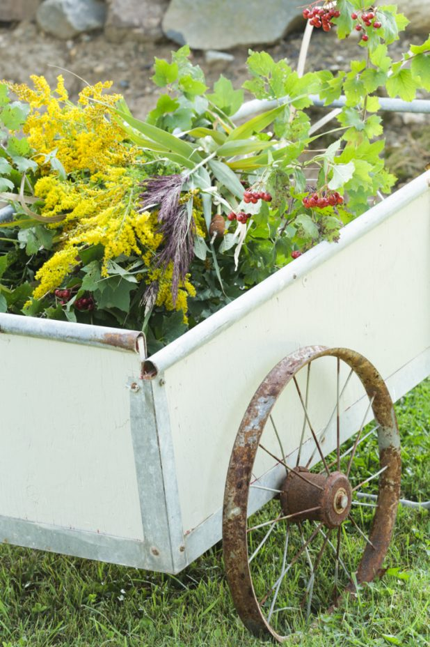Fall Foliage in a Rustic Garden Cart