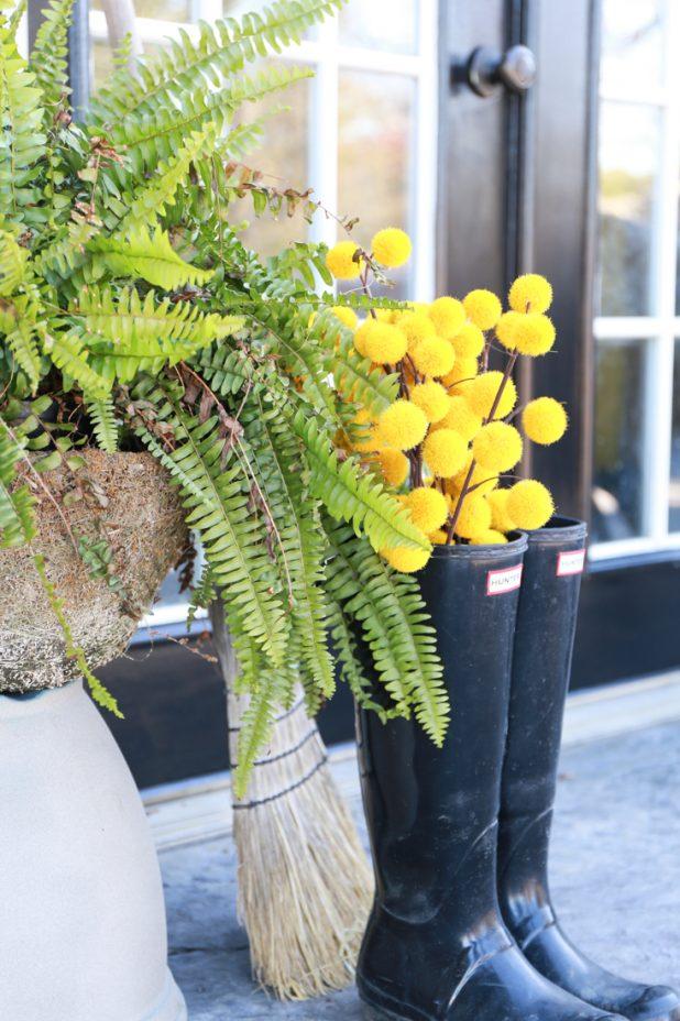 Black Painted Basement Door, Hunter Boots, Ferns, and Yellow Ball Stems