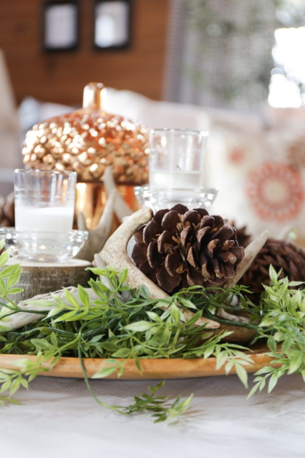 Rustic Fall Centerpiece Using Things Found in Nature