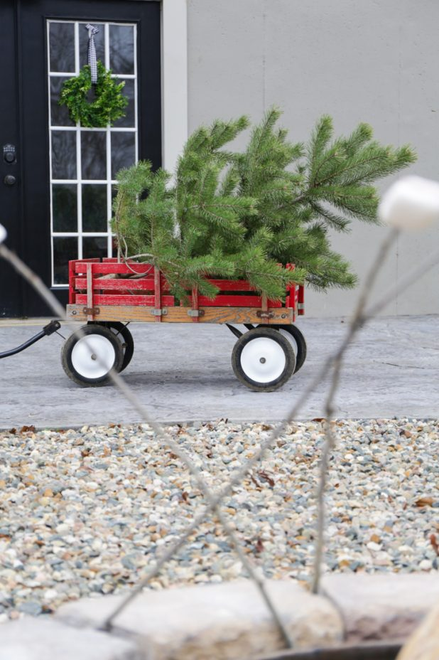 Vintage Red Wagon Hauling a Pine Tree For Christmas