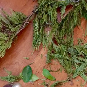 How To Preserve Evergreen Branches For Christmas
