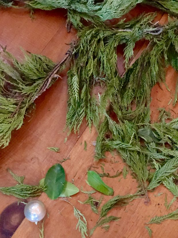 How to Preserve Pine Clippings For Christmas