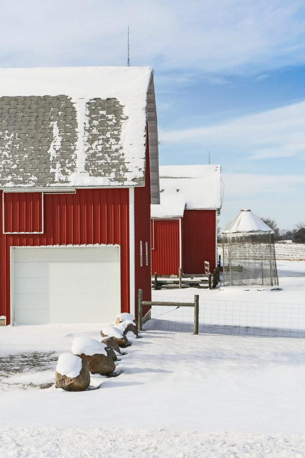 Red Barn, Winter In Michigan