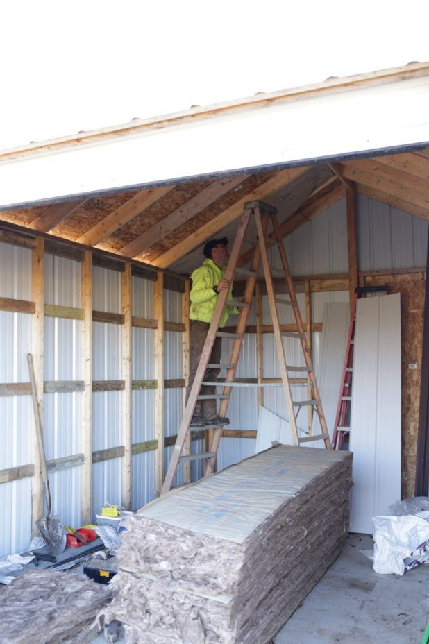 Adding Ceiling Insulation and Ceiling to the Toy Shed
