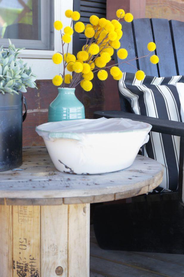 Using an enamelware pan as a mini greenhouse to start pumpkin seeds earlier in the season