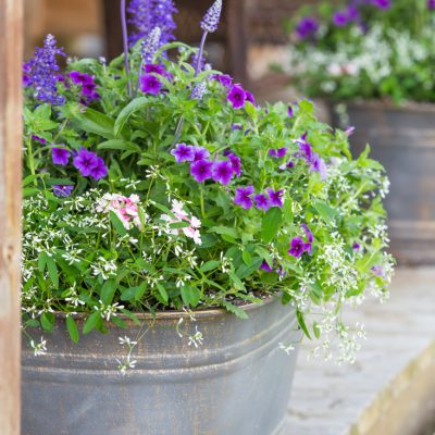 Flower Containers For Curb Appeal