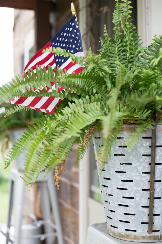 Simple farmhouse decorating for the 4ht of July, I've added American Flags to my ferns and placed them in galvanized olive buckets