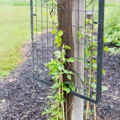 DIY Garden Art Junk Trellis