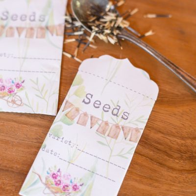 Printable Garden Seed Saver Packets
