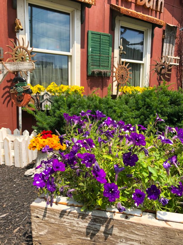 Summer Flowers and Rustic Decor