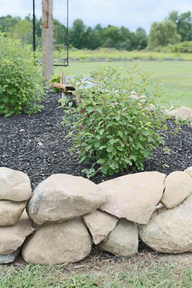 Landscape Ideas Using Rocks
