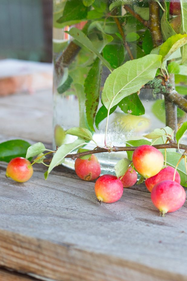 Decorating With Fall Crabapples