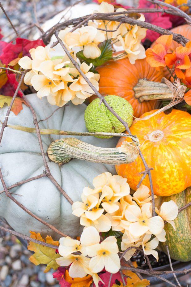 Fall Container Garden