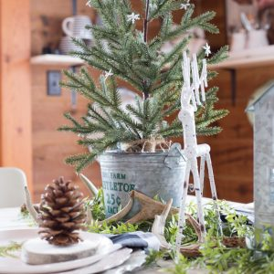 6 Things to Create A Rustic Cozy Natural Christmas Table