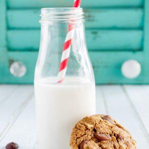 Gluten Free Vegan Chocolate Chip Cookie Recipe