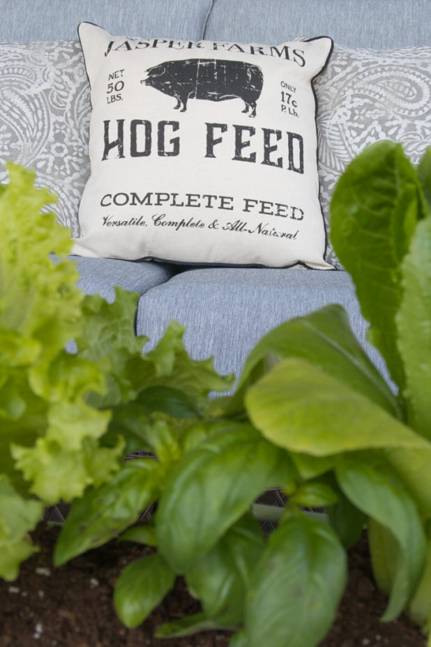 Tractor Supply Farmhouse Porch Finds, Log Home Porch, Farmhouse Pillows, Planting Edibles As Decor, Lettuce and Herbs