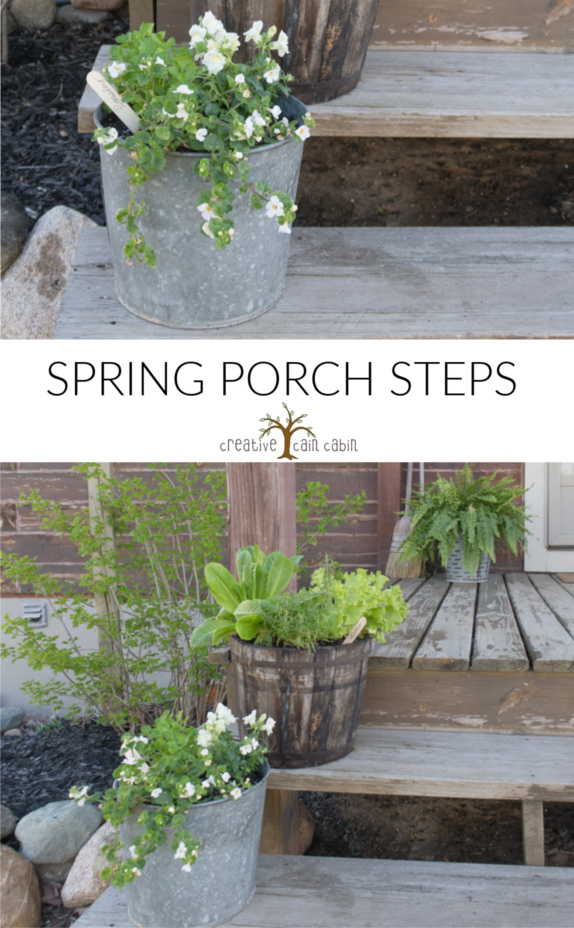 Spring Porch Step, Log Home, Galvanized Bucket, Wooden Bucket, Ferns, Flowers, Herbs, Vegetables