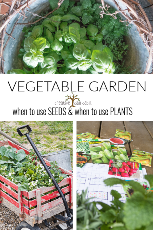 Vegetable Garden. What I Plant From Seed and What I Plant From Starter Plants Here In Michigan