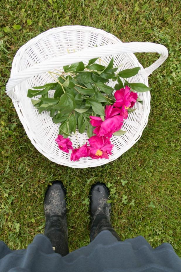 Peonies and Gathering Basket