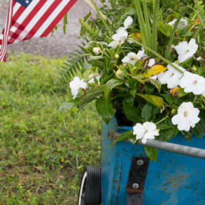Patriotic Chicken Coop and Garden Cart