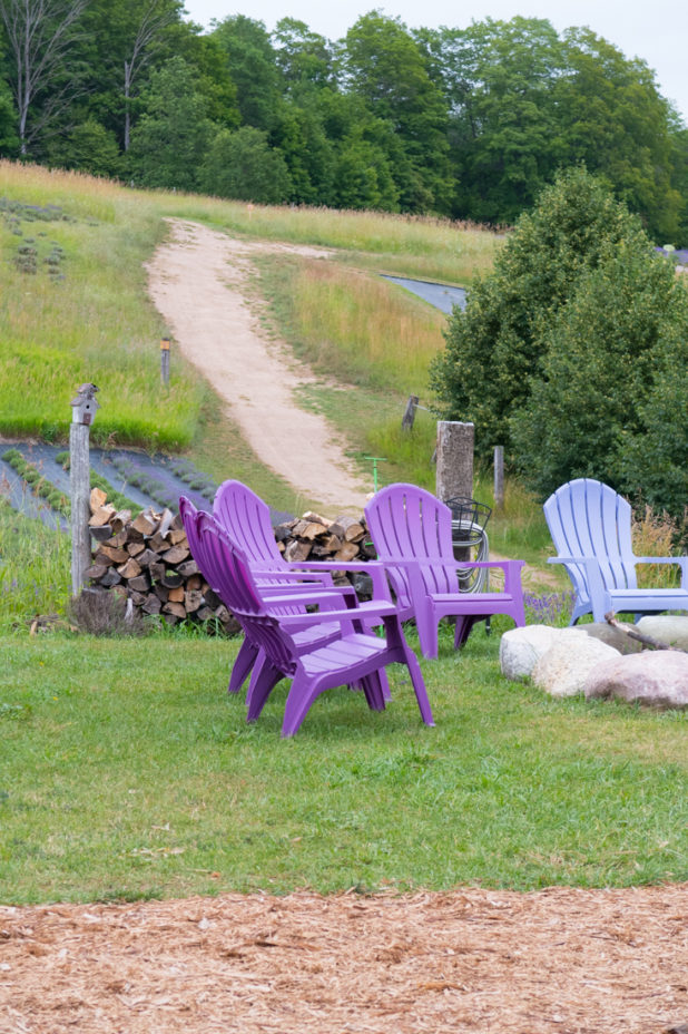 Lavender Adirondack chairs around a fire pit at the lavender farm