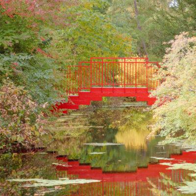 Fall Day Trip \ Dow Gardens
