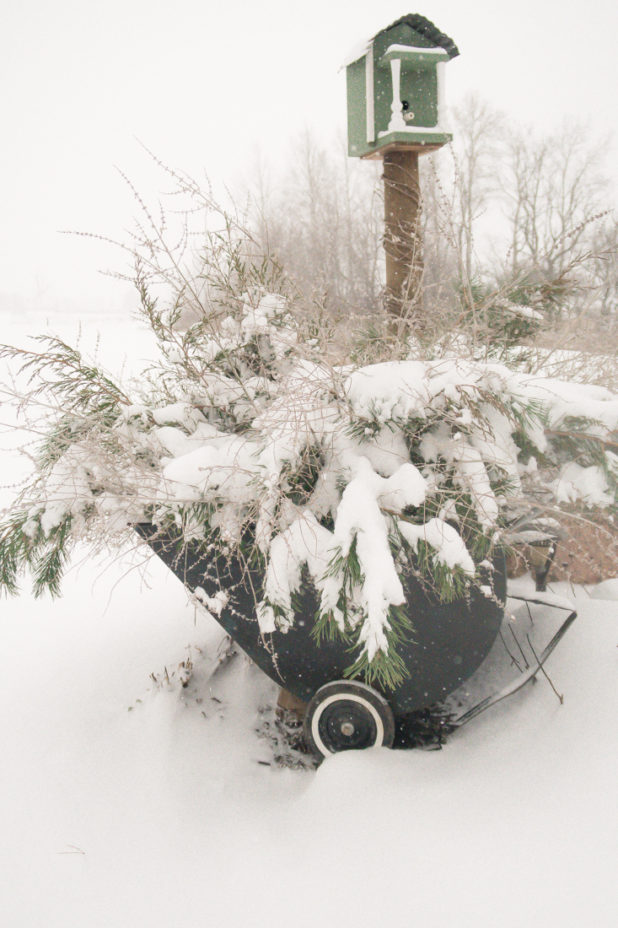 Winter Planter Idea, Winter Garden Cart, Log Cabin, Decorating With Pine Clippings, Snow Covered Winter Planter
