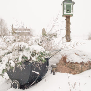 Outdoor Winter Planter Idea Using A Garden Cart