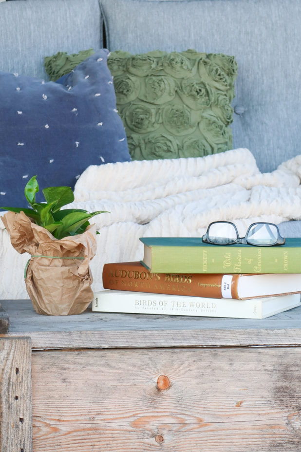 Spring Porch, Reading Porch, Log Home Porch, Cozy, Hygge, Library Books, Bird and Flower Books, Blue and Green Decor, Farmhouse Style