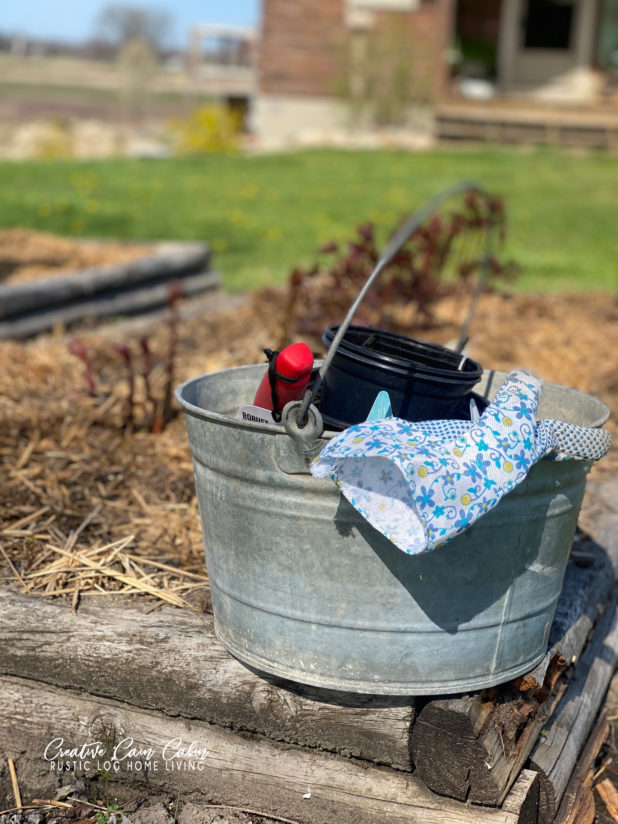Galvanized Bucket, Garden Gloves, Garden Planting