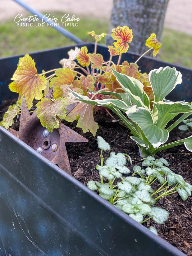 Garden Planter, Rustic Garden Planter, Container Garden