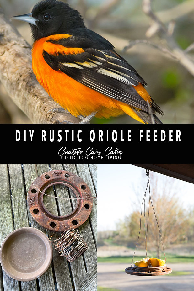 DIY Rustic Junk Oriole Feeder