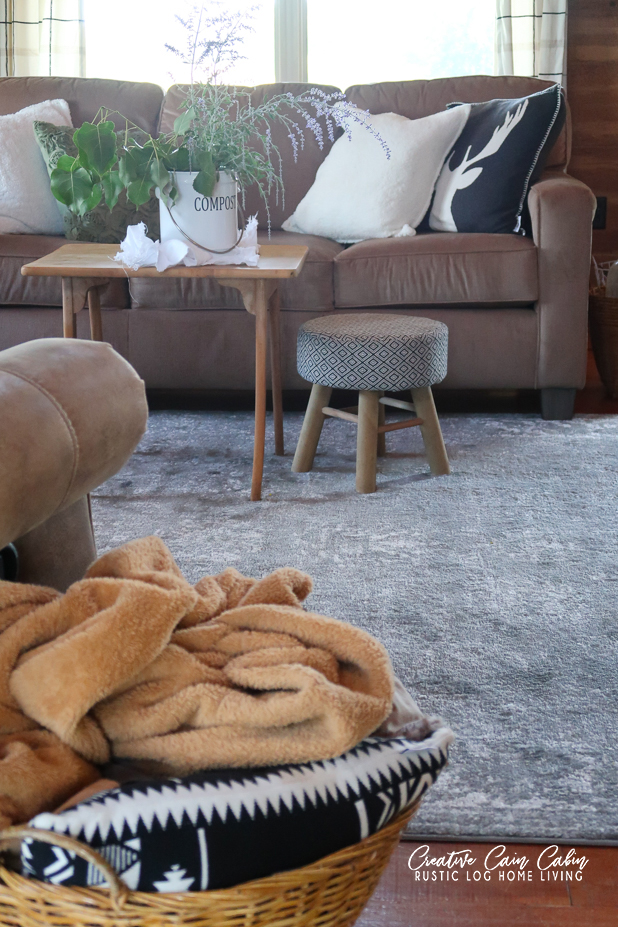 Best Inexpensive Area Rugs, Log Home Living Room