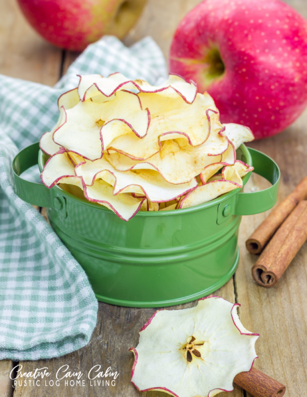 How To Make Apple Chips In a Food Dehydrator