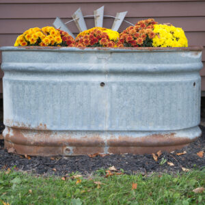 Adding A Touch Of Fall To The Chicken Coop's Exterior